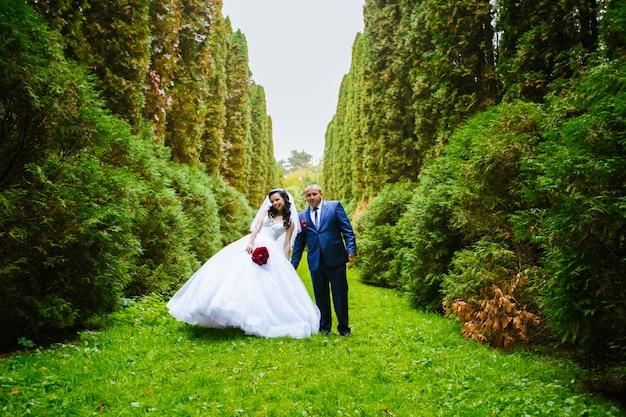 Lo sposo e la sposa si tengono per mano sulla foresta verde della parete