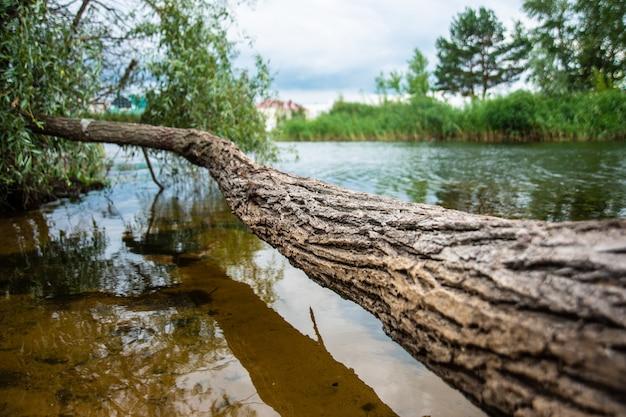 Log appeso sul lago sullo sfondo di un bellissimo paesaggio
