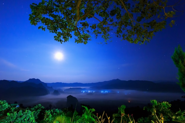 Luce lunare sulla notte con nebbia a phu lang ka, phayao, thailandia