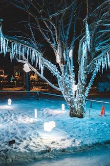 Luci della stringa accese sull'albero di notte