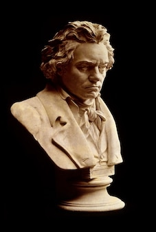 Ludwig van testa compositore busto uomo beethoven