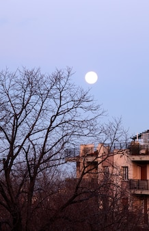 Luna nelle ore del giorno