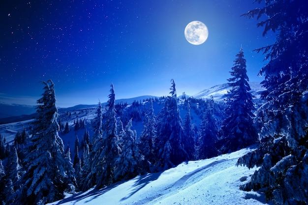 Luna piena sopra la foresta profonda di inverno coperta di neve nella notte di inverno