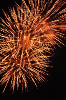 Lunga esposizione di più fuochi d'artificio contro un cielo nero