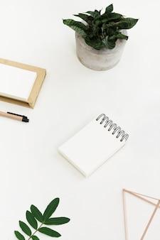 Luogo di lavoro minimalista con blocco note e penna e vaso per piante