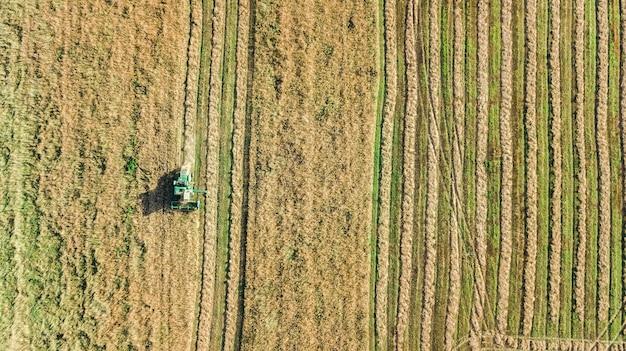 Macchina della mietitrice che lavora nella vista aerea del campo dall'alto, macchina agricola della mietitrebbiatrice che raccoglie il campo di grano maturo