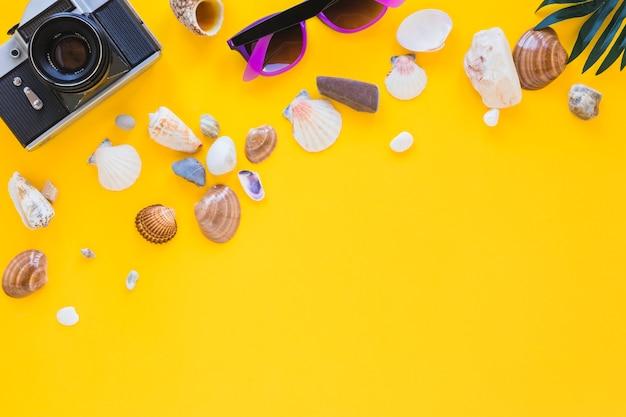 Macchina fotografica con occhiali da sole e conchiglie differenti