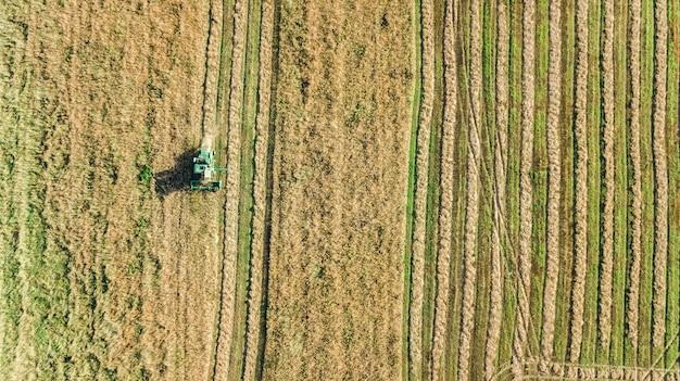 Macchina mietitrice lavorando in campo vista aerea dall'alto, mietitrebbiatrice agricoltura macchina raccolta campo di grano maturo