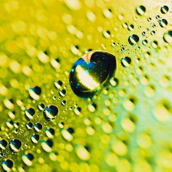 Macro dettaglio della gocciolina di acqua della rugiada sul fondo shinning giallo del bokeh