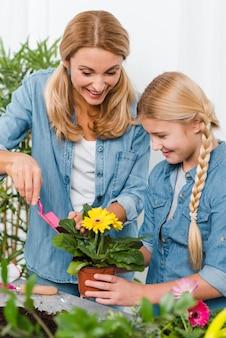 Madre e figlia dell'angolo alto che piantano fiore