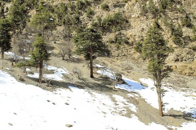 Malam jabba e kalam swat scenery landscape