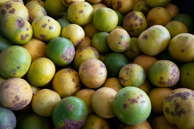 Malattie delle piante fungine della calce dopo il raccolto del prodotto agricolo