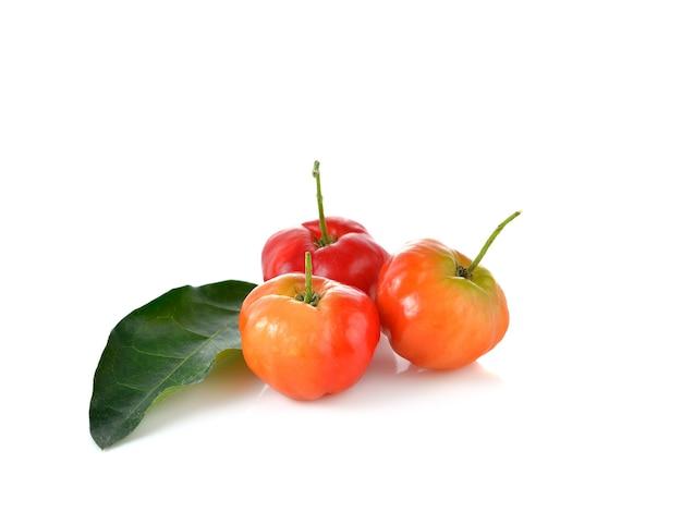 Malpighia glabra, frutto di acerola sul muro bianco