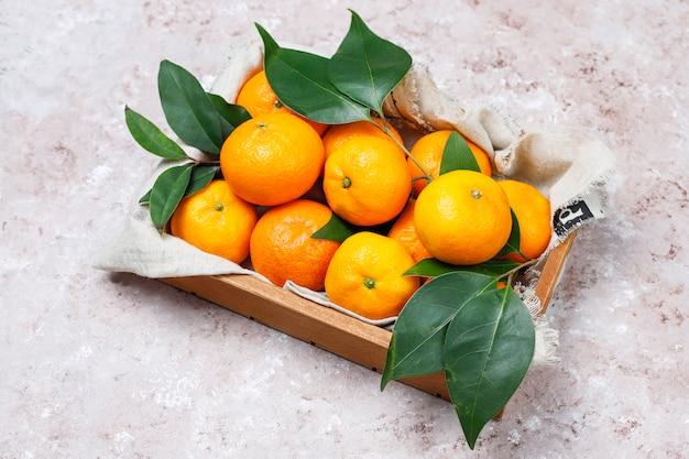 Mandarini (arance, clementine, agrumi) con foglie verdi sulla superficie del calcestruzzo con spazio di copia