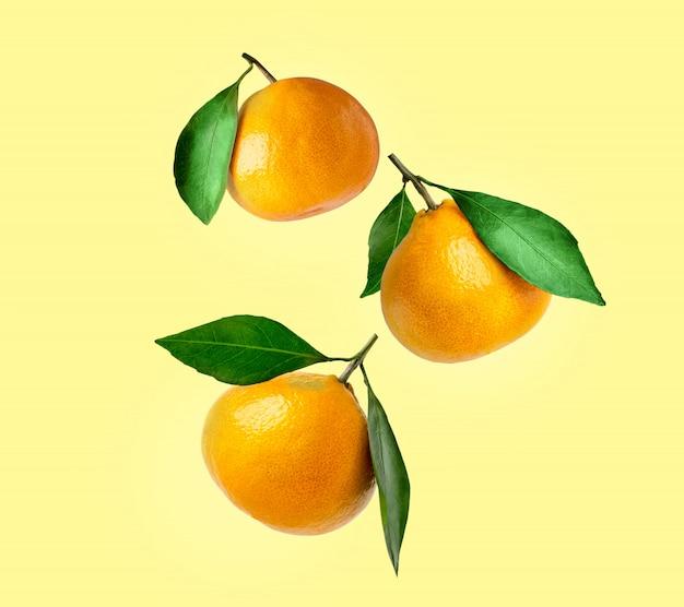 Mandarini di diverse forme con foglia