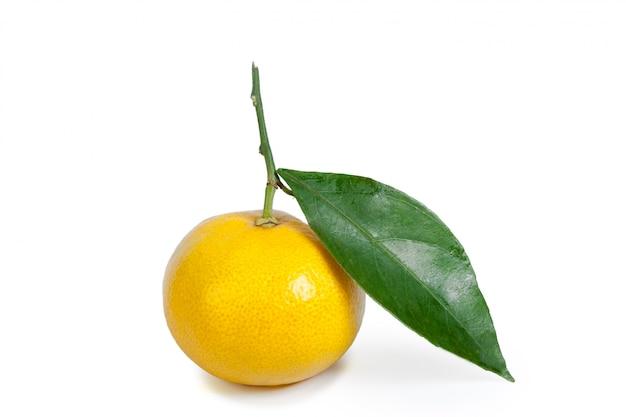Mandarino isolato su bianco
