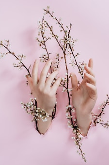 Mani attraverso un muro con rami