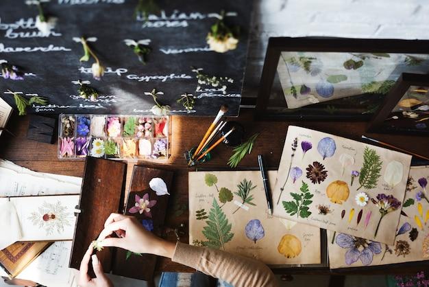 Mani che fanno la raccolta di carte di fiori secchi