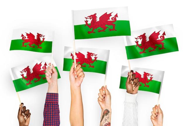 Mani che sventolano bandiere del galles