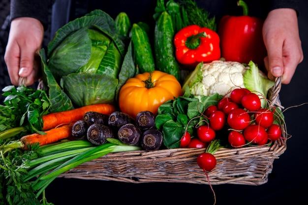 Mani che tengono grande cesto con diverse verdure fresche di fattoria