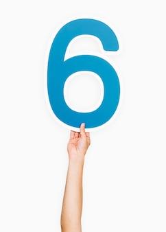 Mani che tengono la lettera 6