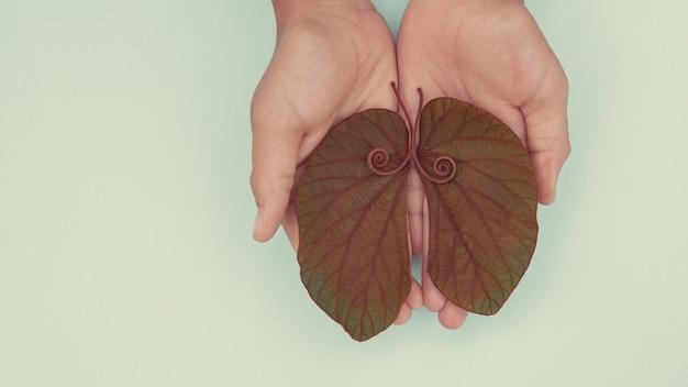 Mani del bambino che tengono foglie a forma di polmone, cancro ai polmoni, giornata mondiale della tubercolosi, giornata mondiale senza tabacco, virus corona covid-19, inquinamento atmosferico eco; concetto di donazione di organi