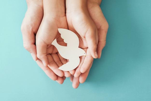 Mani del bambino e dell'adulto che tengono l'uccello bianco della colomba su fondo blu