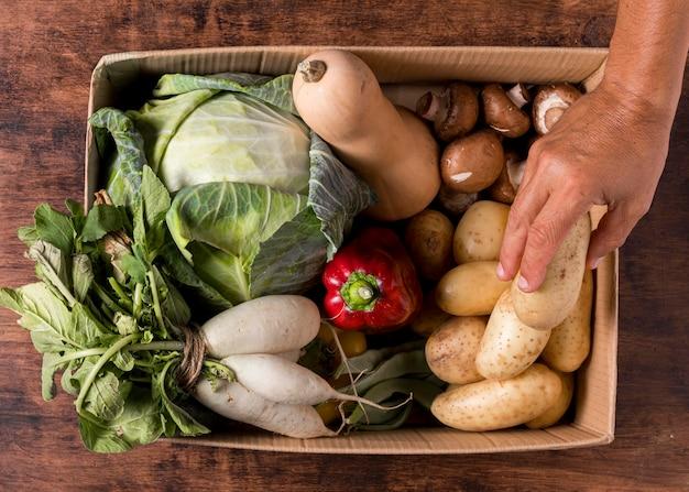Mani del primo piano che tengono la patata fresca