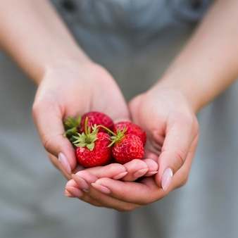 Mani del primo piano che tengono le fragole