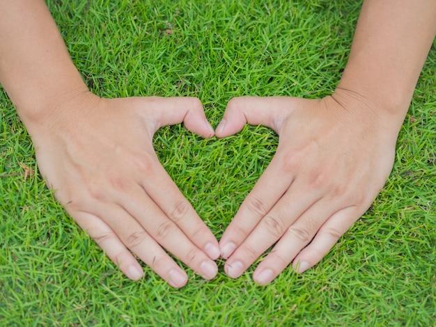 Mani del primo piano nell'erba con la forma di forma del cuore