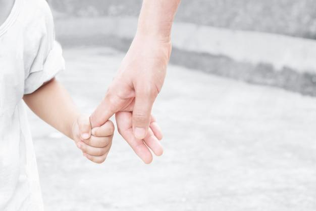 Mani della madre e del bambino e natura di mattina