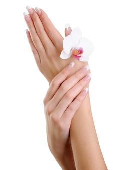 Mani di donna ben curate con fiore