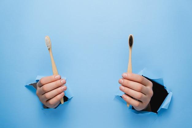 Mani femminili che tengono due spazzolini da denti in bambù eco attraverso un muro di carta blu strappato. d