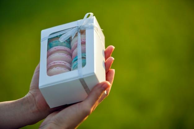 Mani femminili che tengono il contenitore di regalo del cartone con i biscotti fatti a mano blu rosa variopinti del macaron sulla natura vaga verde