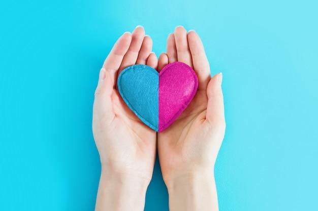 Mani femminili che tengono un cuore dipinto nel colore blu e rosa su un fondo blu, spazio della copia. ragazza o ragazzo, concetto di gravidanza. concetto di gemelli in gravidanza. in attesa di un bambino. concezione, genitorialità