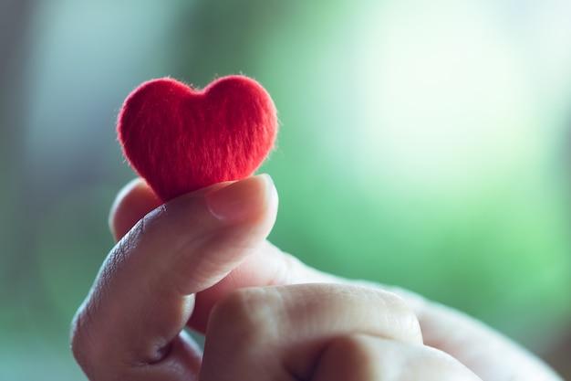 Mani femminili che tengono un piccolo cuore rosso, concetto di san valentino