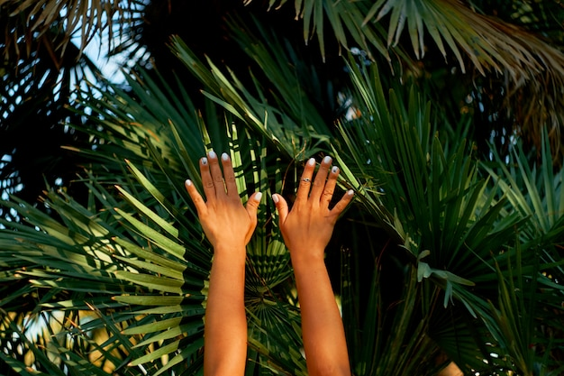Mani femminili sulla foglia di palme di sfondo. mood estivo.