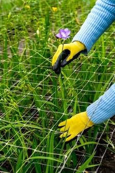 Mani in guanti con fiori