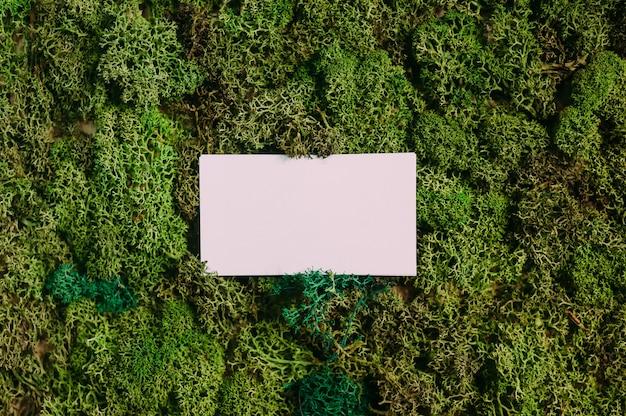 Manichino di biglietti da visita su uno sfondo di muschio verde. concetto sul tema della natura.