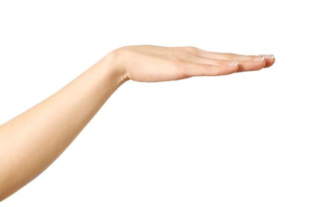 Mano allungata della donna con il palmo aperto
