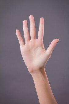 Mano che mostra, rivolta verso l'alto cinque dita, numero cinque gesto della mano