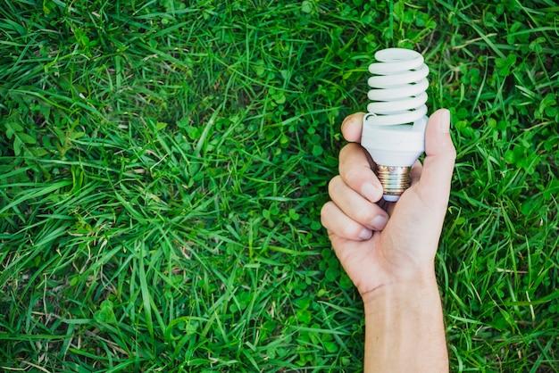 Mano che tiene la lampadina fluorescente compatta sopra l'erba verde