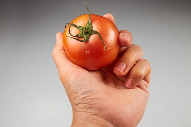 Mano che tiene un pomodoro su uno sfondo grigio chiaro