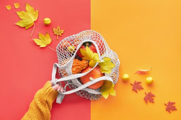 Mano che tiene zucche arancioni in borsa a rete, piatto di carta divisa autunno giaceva in colore giallo e corallo
