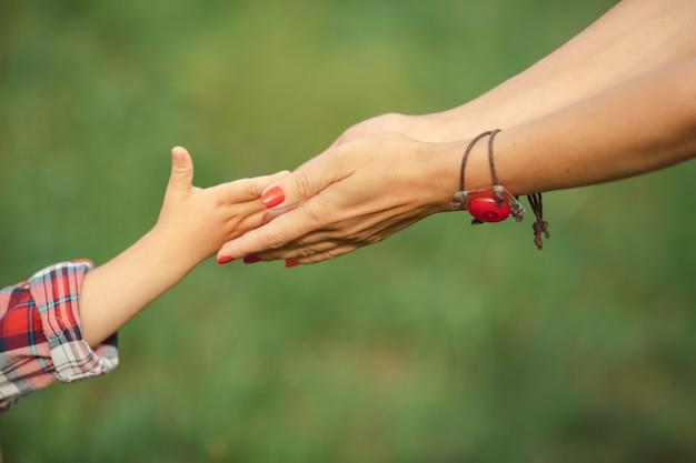 Mano del genitore e del figlio