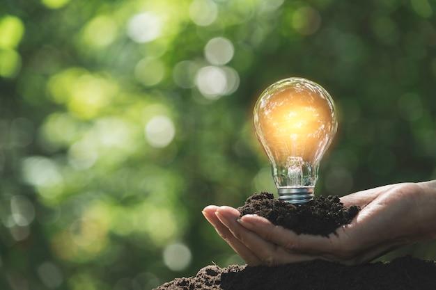 Mano del maschio che tiene una lampadina e copia lo spazio per la contabilità, idee e concept creativo.