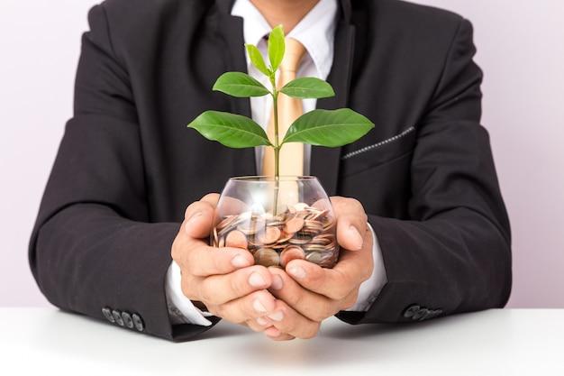 Mano dell'uomo d'affari che mette le monete e la pianta sul vetro