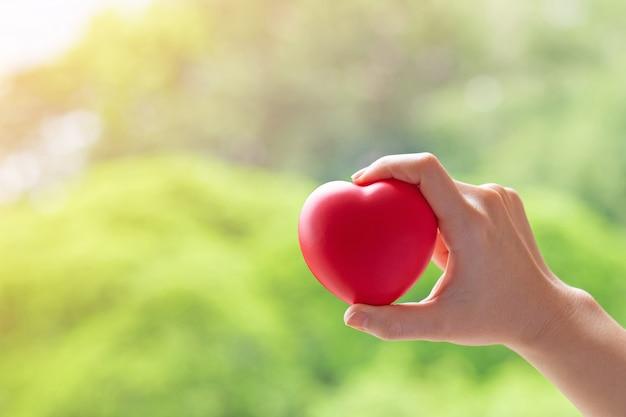 Mano della donna che tiene cuore rosso