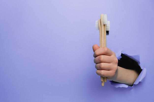 Mano femminile che tiene gli spazzolini da denti di bambù di eco attraverso una parete di carta viola violenta.