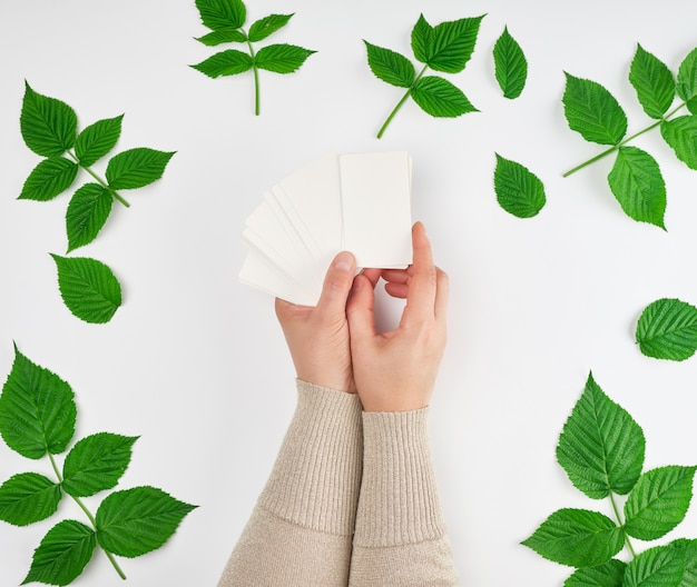 Mano femminile che tiene una pila di biglietti da visita di carta bianca vuota e foglie verdi fresche di lampone